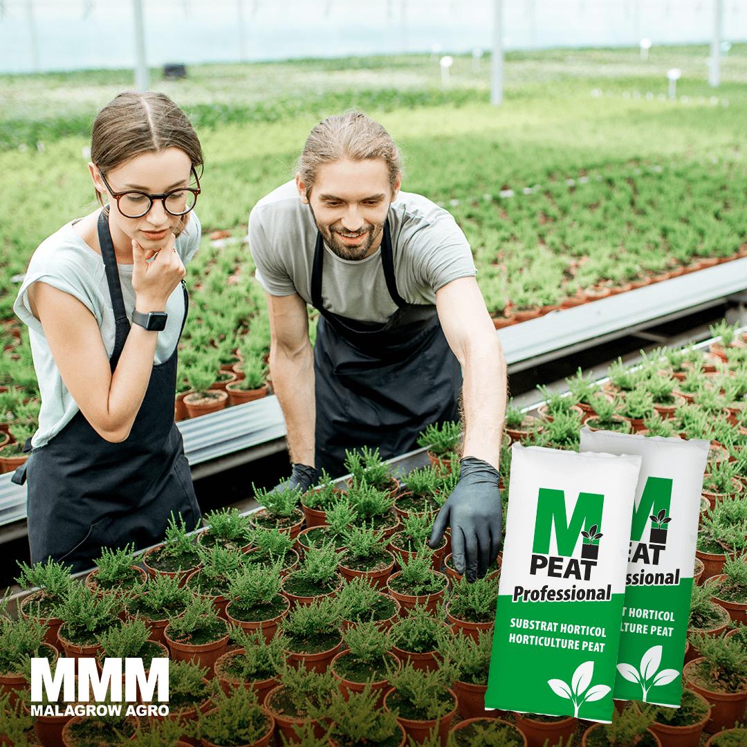 Startul este important. M-Peat: start optim pentru legume si plante ornamentale