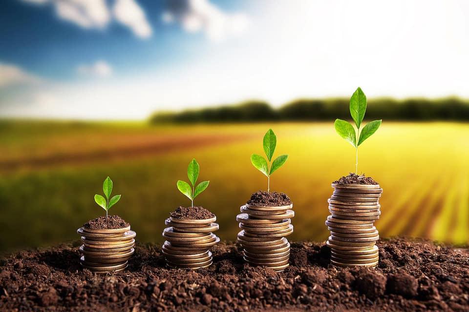 APIA: Final de Campanie a platilor in avans pentru 2020