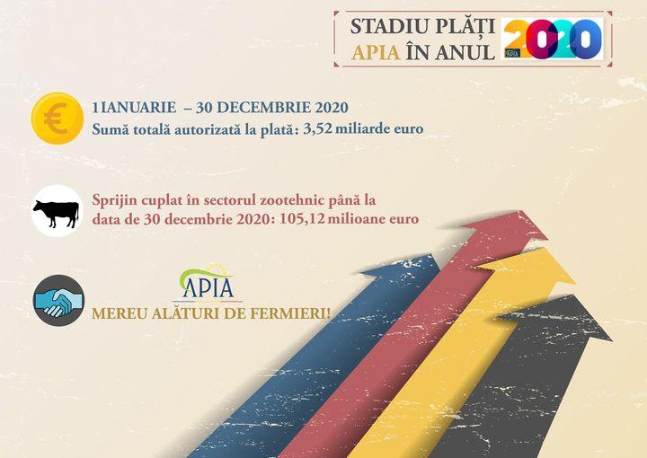 APIA: Stadiul platilor in anul 2020