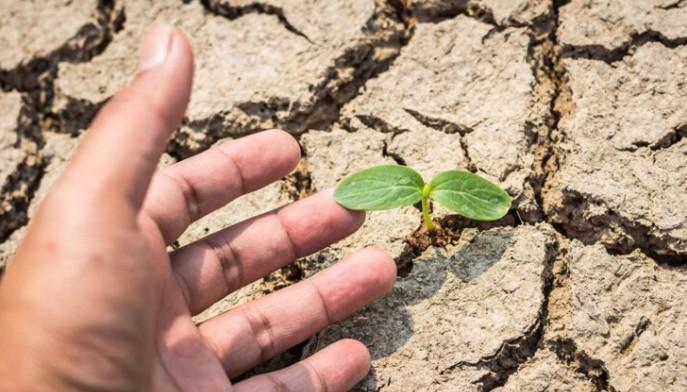 LAPAR: Actuala conducere a Ministerului Agriculturii nu mai prezinta incredere