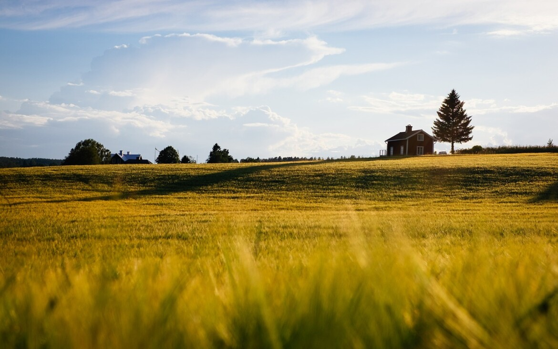 Commoditrader sustine tranzitia catre agricultura conservativa si pregateste extinderea in UE