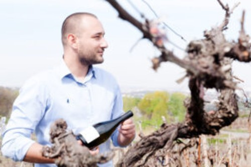 Gramma Wines intra in piata de turism viticol