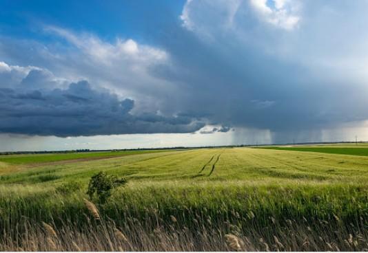 Fermierii vor un mecanism de ajustare la frontiera a emisiilor de carbon pentru produsele agricole