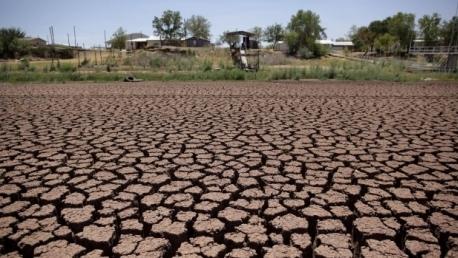 Un sfert dintre fermierii afectati de seceta din 2020 nu au bani de semanaturi
