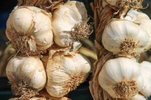 garlic-3747176_640