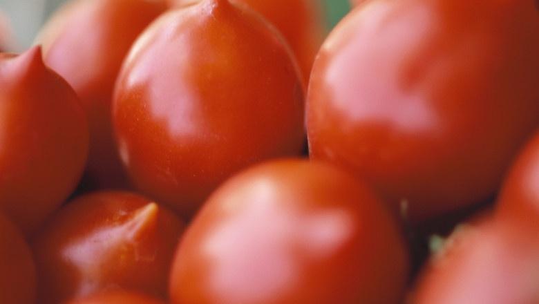 Productia de legume si fructe, in pericol din cauza frigului