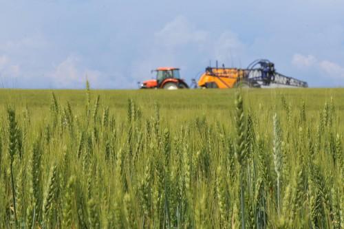 FNGCIMM: Grad angajare de 12% pentru AGRO IMM INVEST, dupa primele 13 zile de la lansare