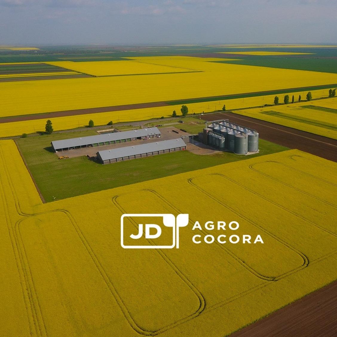 Fuziune intre Jantzen Development și JD Agro Cocora