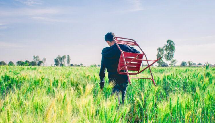 Fermierul Ilie Popescu: Din zece elevi care vin in practica, doar doi-trei sunt interesati de ferma