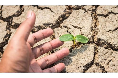 ANM anunta o vara secetoasa