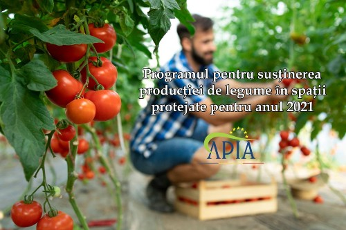Legumicultorii nu se inghesuie sa obtina sprijinul pentru productia in sere si solarii. Cereri depuse pentru 307 ha