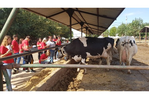 Studiu: Unu din trei elevi ai liceelor agricole intentioneaza sa-si inceapa propria afacere sau sa o continue pe cea a familiei