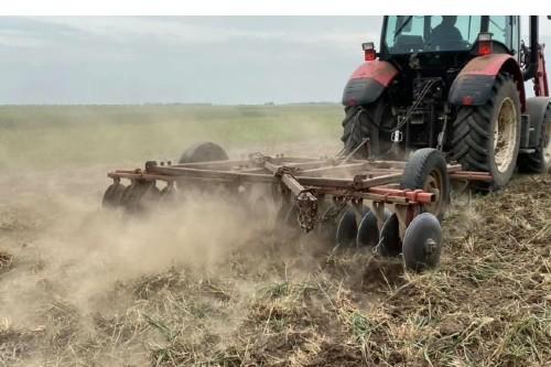 Agricultura din Timis si Arad, lovita naprasnic de seceta
