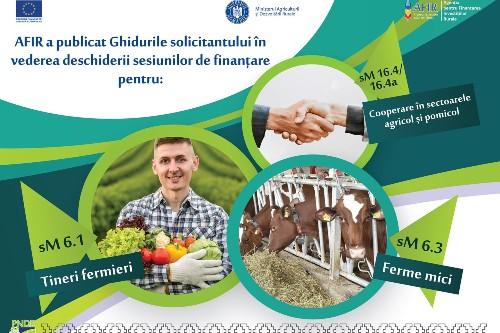 AFIR: Finantare nerambursabila 100% pentru tinerii fermieri, fermele mici si cooperare in sectorul agricol si pomicol
