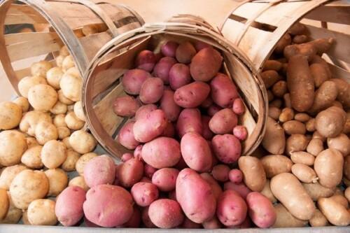 Cat ii costa pe producatorii de cartofi un depozit de 500 de tone. De ce le trebuie 600 mil. euro