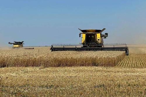 Holde Agri Invest finalizeaza achizitia fermei Videle de 2.400 ha. Ce urmeaza, in acest an