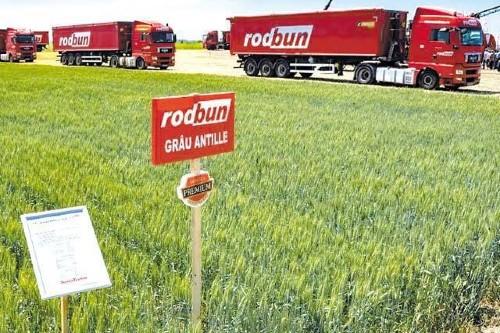 Grupul Rodbun imprumuta 57 mil. euro de la mai multe banci. Bani pentru dezvoltare