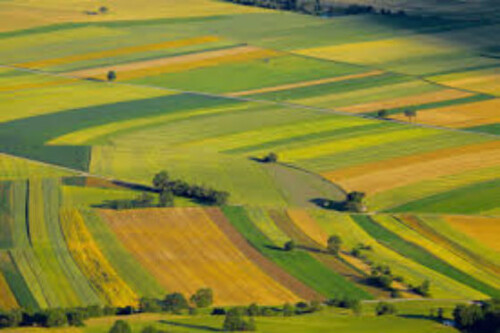 Tranzactie de circa sase milioane euro cu terenuri agricole la Iasi. Suma record platita pentru un hectar