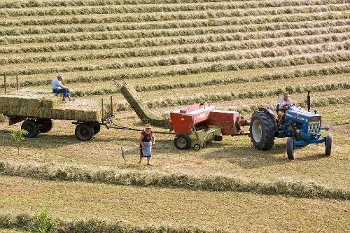 "Strategia ""Farm to Fork"" nemultumeste fermierii. Vot in PE, luni"