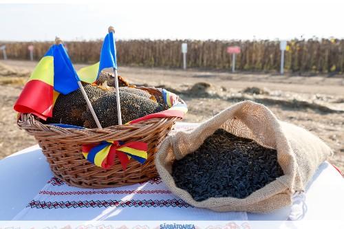 Valariu Tabara: Exportam floarea soarelui in Bulgaria, importam ulei si lasam srotul acolo