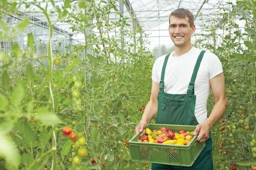 Fondurile pentru  instalarea tinerilor fermieri, epuizate inainte de termenul limita